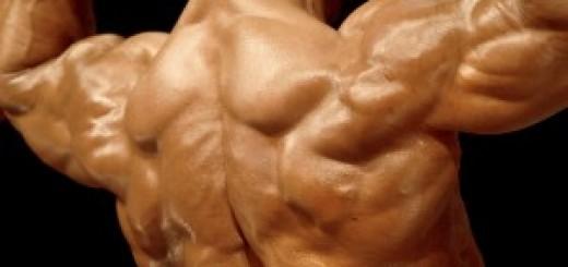 Shoulders Like Boulders
